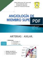 Anatomia Miembro Sup Vascularizacion
