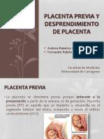 placentapreviaydesprendimientodeplacentaandreayfer-140218175229-phpapp02