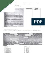 EVALUACION DE LENGUA adaptacion verbos.docx