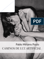 CAMINOS DE LUZ ARTIFICIAL (I-XX) - Pablo Miñarro Prado