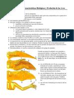 Características biológicas y evolución de las Aves