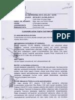 Sentencia-aimara.pdf