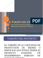 PROYECTOS II.ppt