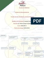 Mapas conceptuales Tractos sensitivos y motores.docx