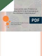 Evaluación Del Potencial Nutracéutico de Zarzamoras