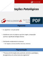 Aula 07 Pigmentações Patológicas.pdf