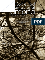 La Sociedad Internacional amorfa.pdf
