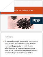 Virus-de-varicela-zoster (final.pptx