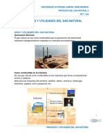 Procesos y Utilidades Del Gas Natural