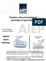 Bases Neuro 9