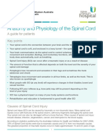 A Guide for the Patient Anatomy and Physiology Spinal