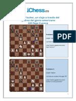 Bobby Fischer Problemas