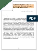 Analisis Bioquimico, Morfologico y Fisiologico de algunas tecnicas de patada del taekwondo