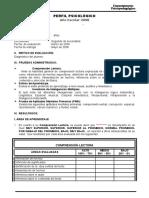 MODELO DE INFORME 2DO DE SECUNDARIA - 2008.doc