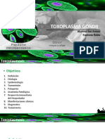 TOXOPLASMA GONDII- JOE ESPINOZA.pptx