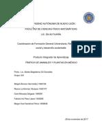 Evidencia 1 Cuadro Comparativo de Los Patrones de Producción y Consumo Entre México y Otros Países - Copia