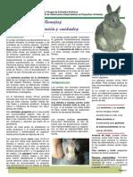 conills.pdf