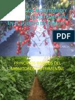 Monitoreo Nutrimental Tomates Narro 2010
