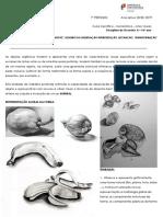 2ªU.T._Natural_Metamorfose_transformação 18-19.pdf