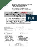 ANALYSE DE LA DYNAMIQUE DES ECOULEMENTS-2009.pdf