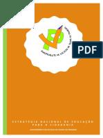 Estratégia Nacional Cidadania - AEVP