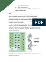 Lapres DNA