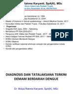 Diagnosis dan tata laksana DBD_handout_19Jan2019.pdf