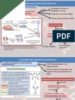 Articulo 1 Artritis Reumatoide