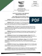 San Juan County passes Second Amendment sanctuary county resolution