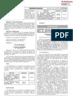 RM 009-2019-MINEDU
