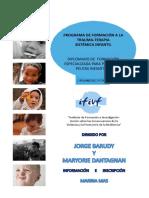 Programa-IFIVF.pdf