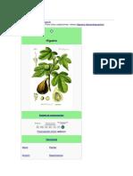 Ficus carica.docx