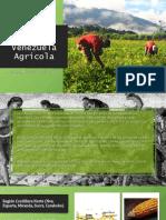 Armando Guedez Rodriguez-Venezuela Agrícola