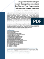 Final Programmatic Damage Assessment and Restoration Plan and FInal Programmatic Environmental Impact Statement