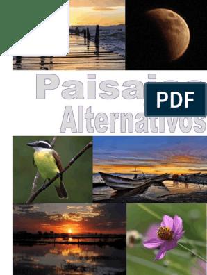 Paisajes Alternativos 2016 Libro Pdf Diseño Discapacidad