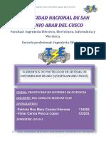 proteccion huaro final.docx
