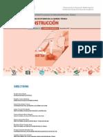 Construccion_2017.pdf