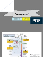 Transport of Sodium and Chloride