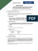 TDR - Tiambra.docx