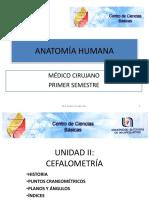 Cefalometria