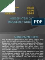 10582_Konsep Nyeri Dan Manajemen Stress