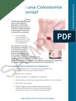 Bolsas de DesecgoBolsas de desecho (colostmias)