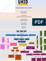 Organizador Grafico Diferentes Tipos de Evaluación
