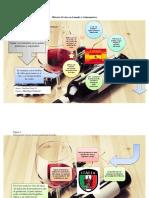 Historia del vino en el mundo y Latinoamérica.docx