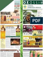 Jornal Janeiro 2018 Final Baixa