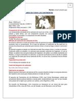 SALARES EN TODOS LOS CONTINENTES.docx
