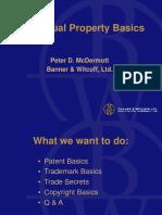 IP Basics