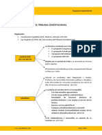 Esquema_TribunalConstitucional.pdf