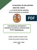 179282147-informe-quinua