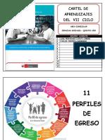 Cartel de Aprendizajes Area Curricular Cien Cias Sociales Quinto Año[1]